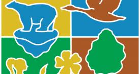 22 mai: Ziua internațională a biodiversității