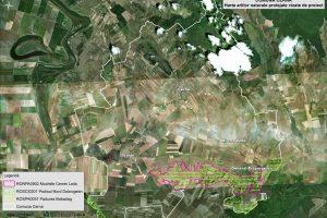 Cerna harta ariilor naturale vizate de proiect