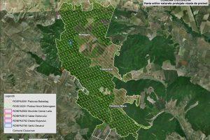 Ciucurova harta ariilor naturale vizate de proiect