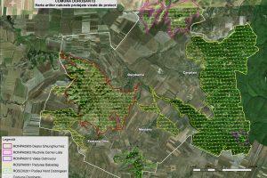Dorobantu harta ariilor naturale vizate de proiect
