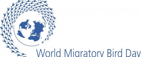 12 octombrie: Ziua Mondială a Păsărilor Migratoare