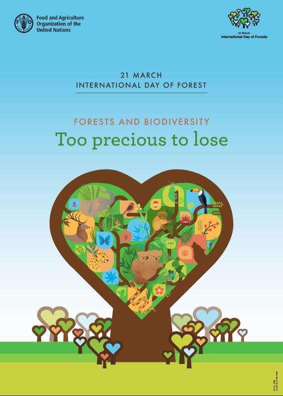 Ziua internaţională a pădurilor