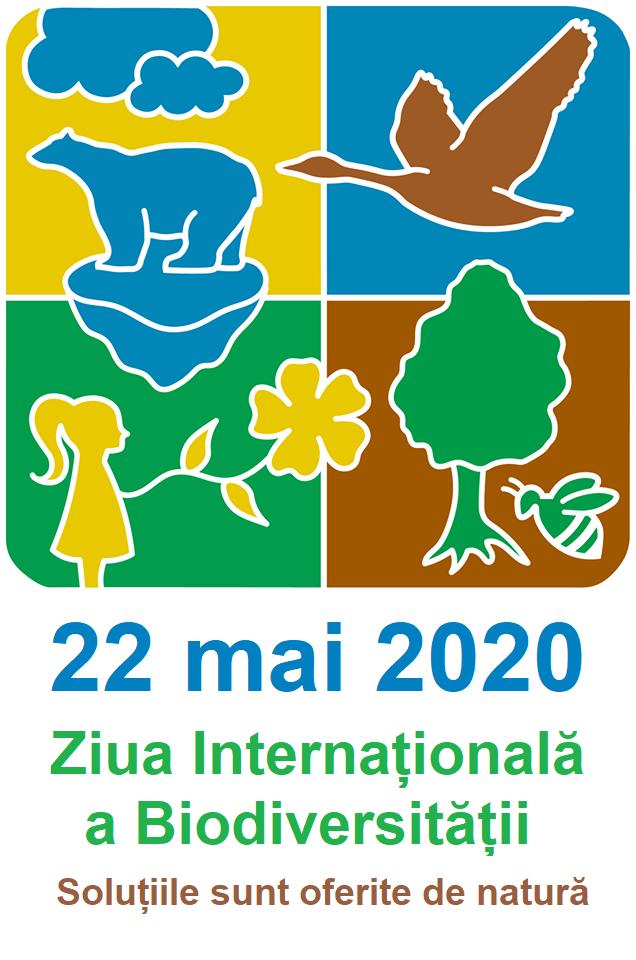 Afiș Ziua Internațională a Biodiversității