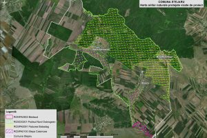 Stejaru harta ariilor naturale vizate de proiect